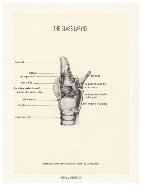 glass-larynx-ONG-h